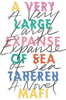 ver large expanse.jpg